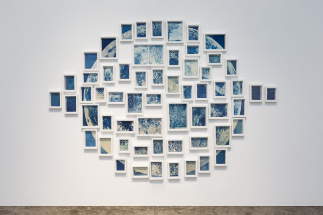 Ala Ebtekar, Thirty-six Views of the Moon, 2018 59 individual cyanotypes on found book pages exposed to moonlight Dimensions variable Edition 1 of 4 (Spring) Courtesy of the artist and The Third Line