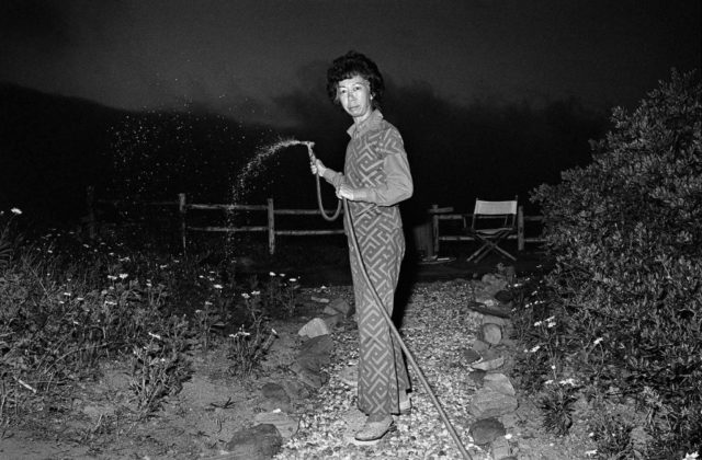 Michael Jang, Lucy Watering at Night, 1973 © the artist