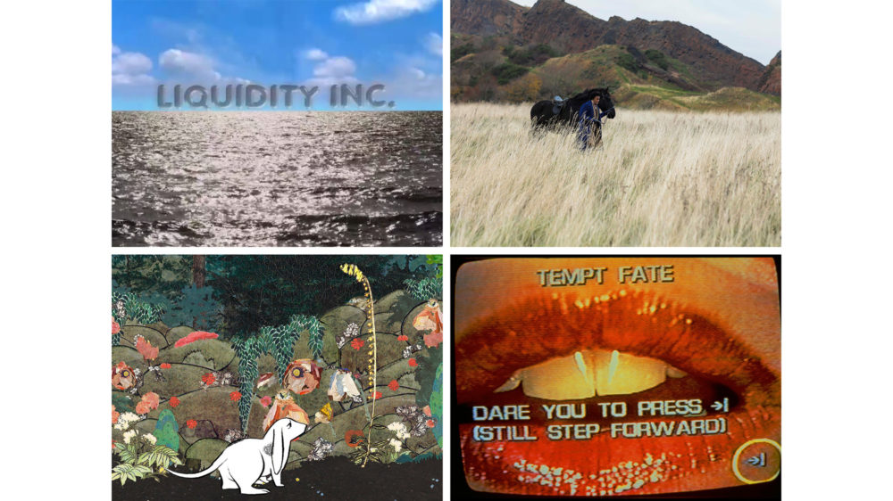 """Clockwise from top left: a still from Hito Steyerl's """"Liquidity Inc."""" (2014); a digital print of Isaac Julien's """"Lessons of the Hour (Lessons of the Hour)"""" (2019); a still from Lynn Hershman Leeson's """"Lorna"""" (1979-84); a still from Rachel Rose's """"Lake Valley"""" (2016).Credit...Clockwise from top left: courtesy of the artist, Andrew Kreps Gallery, New York and Esther Schipper, Berlin; © Isaac Julien, courtesy of the artist and Metro Pictures, New York; © Lynn Hershman Leeson, courtesy of the artist and Bridget Donahue, N.Y.C.; courtesy of the artist and Gavin Brown's enterprise New York/Rome"""